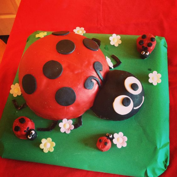 Chocolate fudge ladybird cake. All edible and even the small ladybirds have cake inside! My first attempt at a shaped, themed cake!