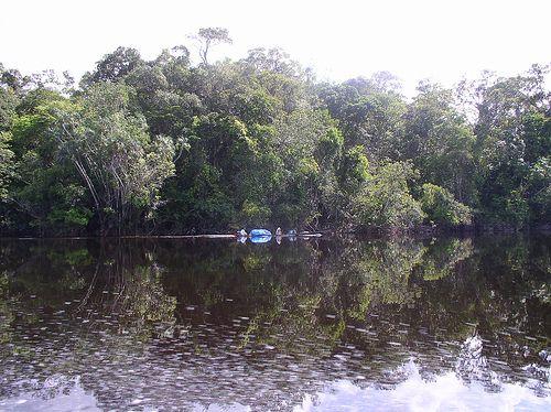 Canoe in Rio Negro river.