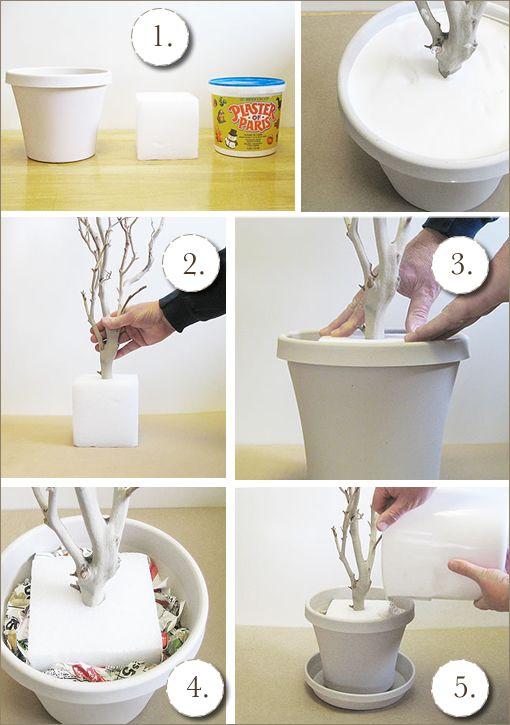 DIY: l'arbre souvenir ou bien l'arbre pour centre de table