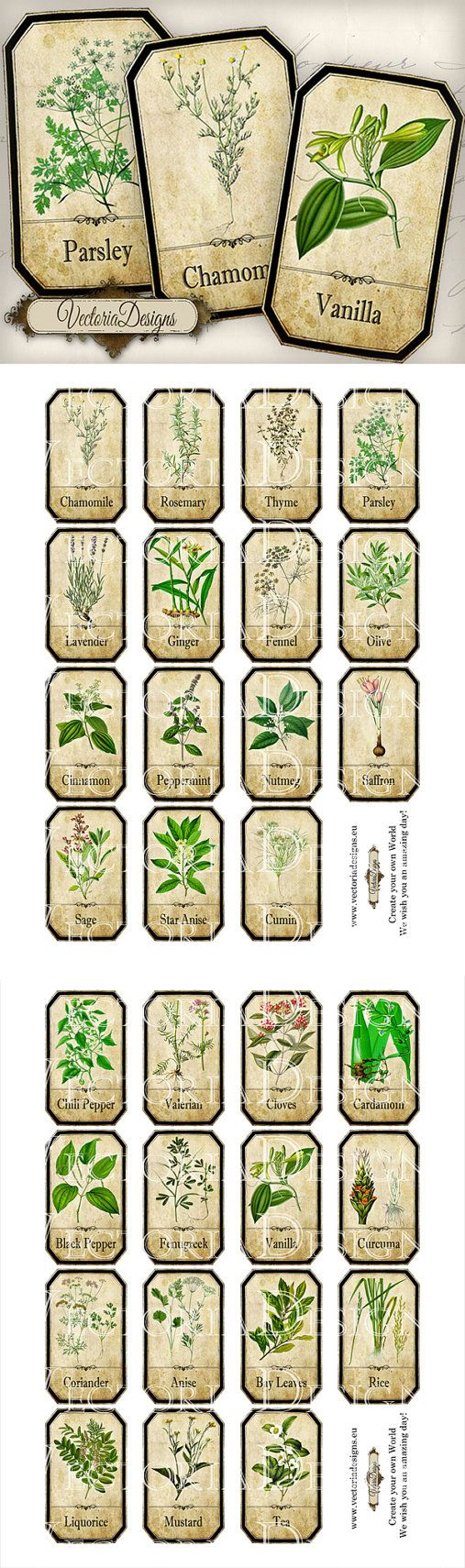 HERB JAR LABELS , HAVE TO REMEMBER TO USE THESE FOR MY HERBS... - / Spice Labels Jar Labels Tags instant download by VectoriaDesigns, $3.95:
