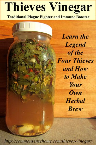 how to use herbs in your daily life