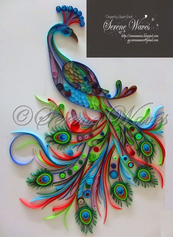Project 39 mayur 39 a beautiful peacock that took me close for Paper quilling art projects