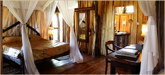 tree house bedroom magical places pinterest tree house bedrooms