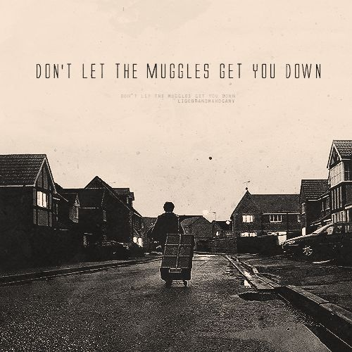 harry potter don't let the muggles get you down