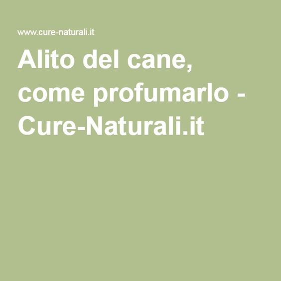 Alito del cane, come profumarlo - Cure-Naturali.it