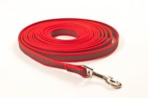 Leine, 15mm breit, 10m, rot, gummiert, ohne Handschlaufe, 10m, 19,90 EUR incl. Mwst, zzgl. Versand