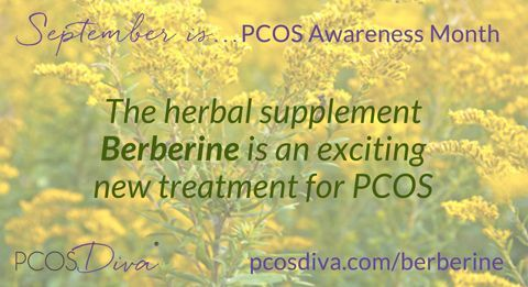 The herbal supplement berberine is an exciting new treatment for PCOS. It has recently undergone two clinical trials with great results. For more about berberine, check out: 4 Big Benefits of Berberine for PCOS and Exciting New Treatment for PCOS – Berberine. http://pcosdiva.com/2014/12/berberine-pcos/