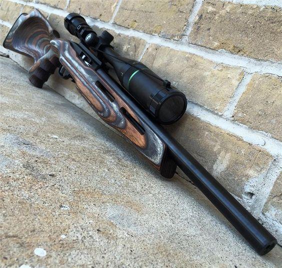 Ruger 10 22 Target Varmint Tactical Custom 22 22 Semi
