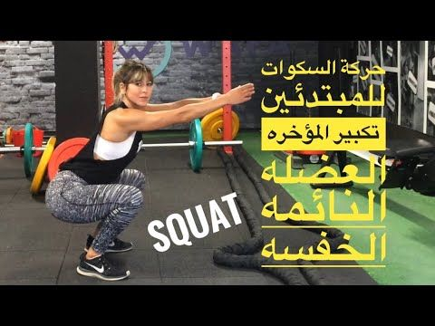 Squat تمارين السكوات للمبتدئين السكوات لتكبير المؤخره العضله النائمه Youtube Gym Workout Tips Wall Workout Gym Workouts