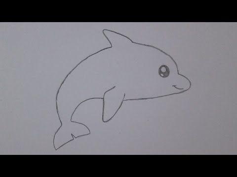 malvorlagen delfin youtube