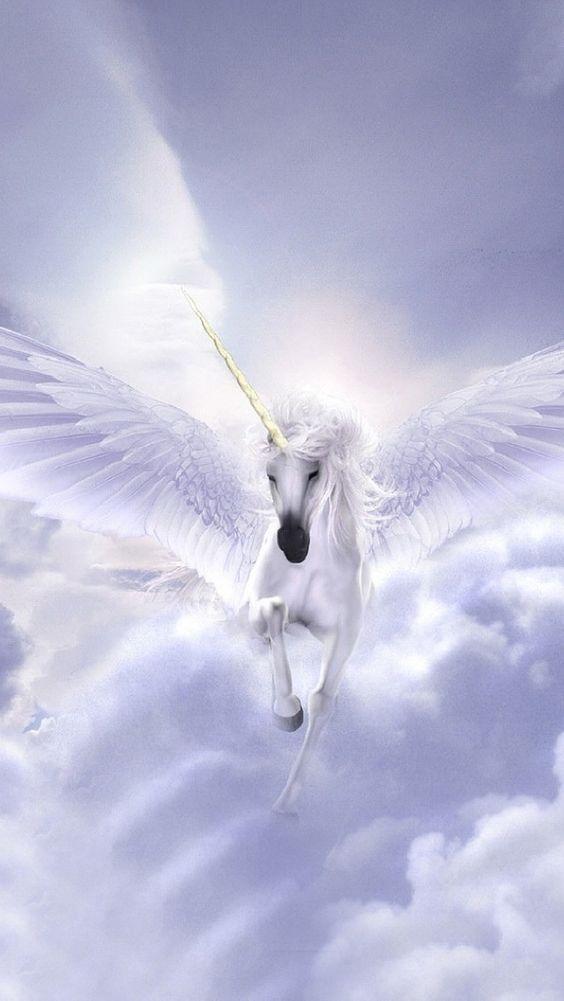 white flying horse | Flying white horse iPhone 5 ...