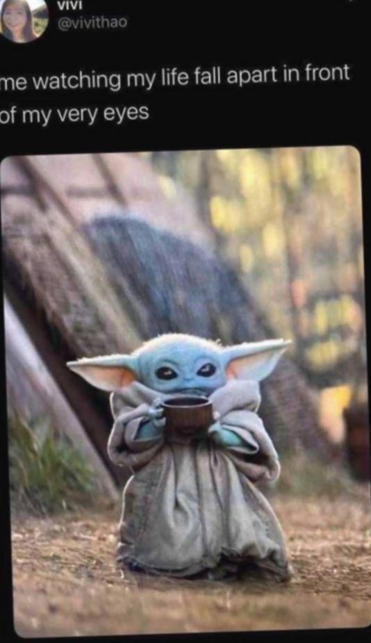 Pin By Sam On Baby Yoda In 2020 Yoda Meme Yoda Funny Pictures