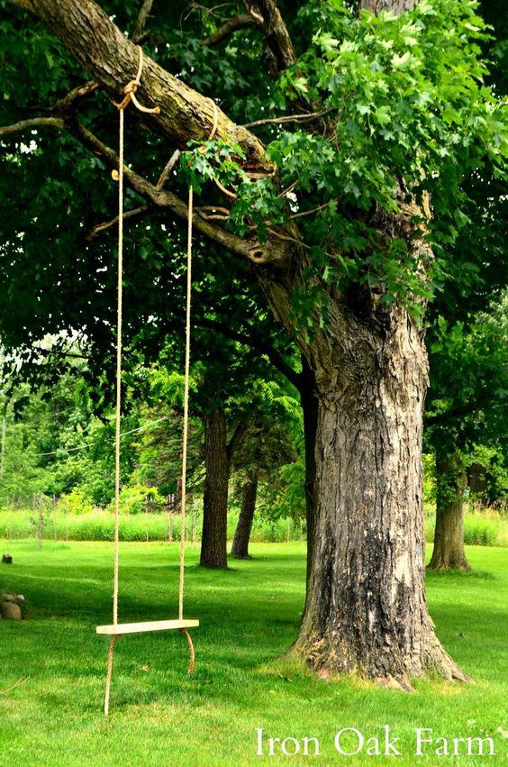 Iron Oak Farm: Farmyard Tree Swing