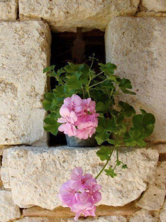 dans le mur- comme c'est jolie....