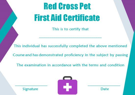 First Aid Certificate Template 15 Free Examples And Sample Templates Free Download Template Sumo Certificate Templates First Aid Paediatric First Aid