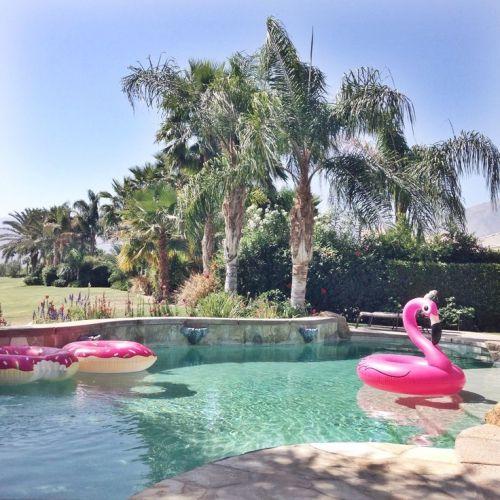 des bou es ludiques et color es pour la piscine flamants. Black Bedroom Furniture Sets. Home Design Ideas