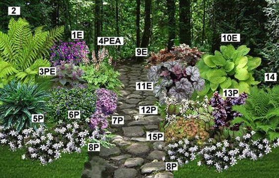 massif couvre sol mi ombre pr sentation gardening pinterest mousse et balayage ombr. Black Bedroom Furniture Sets. Home Design Ideas
