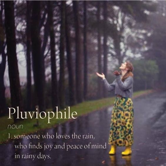 Funny Rainy Day Meme : Pluviophile someone who loves the rain finds joy