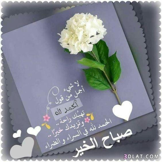 اجمل رسائل وصور الصباح 2018 مسجات 3dlat Com 12 18 Cc05 Happy Birthday Pictures Happy Birthday Wishes Photos Good Morning Flowers