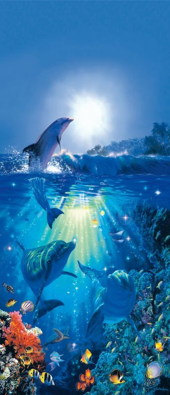 Brewster DM513 Dolphin In The Sun Wall Mural Dolphin In The Sun Wall Coverings Adhesives Murals