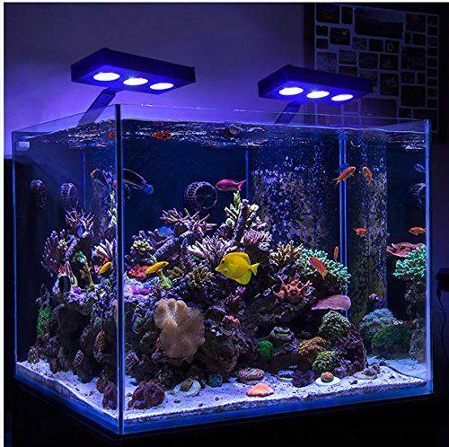 10 best reef led lights reviews side
