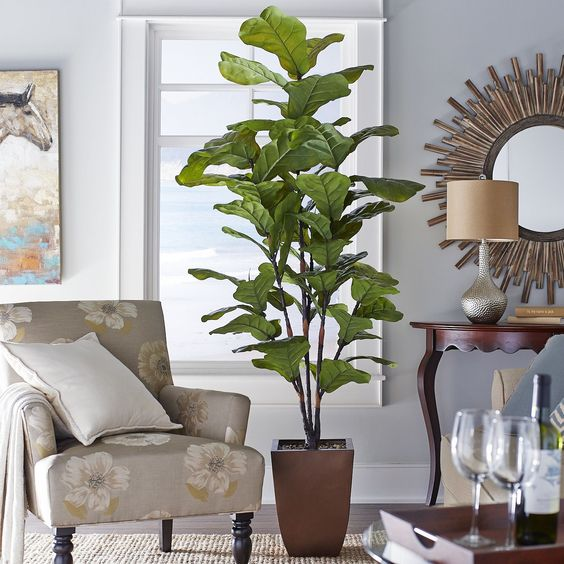 Faux Fiddle Leaf Fig Tree Pier 1 Imports I Love