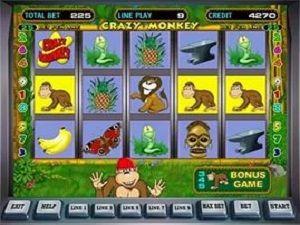 казино нова 21