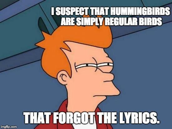 Futurama Fry I Suspect That Hummingbirds Are Simply Regular Birds That Forgot The Lyrics Image Tagged In Memes Futurama Fry Funny Images Memes Meme Maker