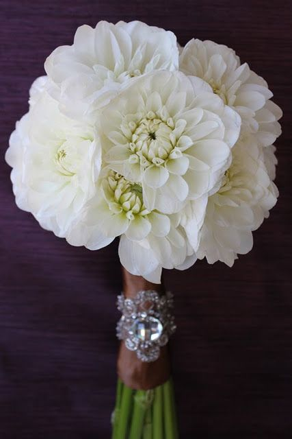 simple and elegant white dahlia wedding flower bouquet bridal bouquet wedding flowers add pic. Black Bedroom Furniture Sets. Home Design Ideas
