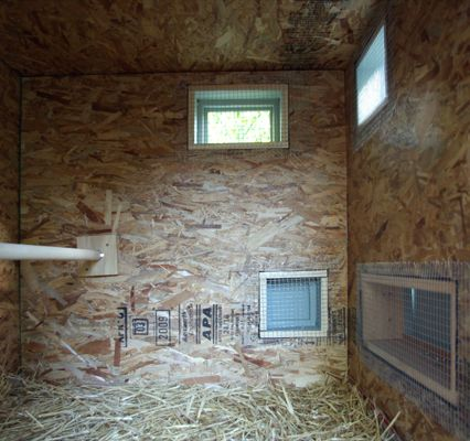 Mitchell Snyder and Shelley Martin Chicken Coop, Interior showing framing for windows