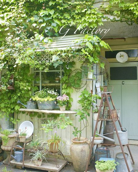 Potting Shed and Benches Ideas