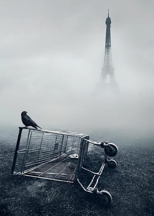 J'aime !Paris: Tour Eiffel, Mikkolagerstedt, White Photo, Eiffel Towers, Black And White, Shopping Carts, Black White, Mikko Stock Laid