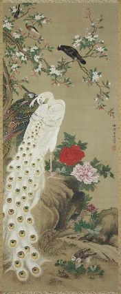 Peafowls and Flowers