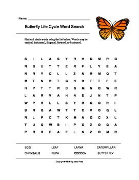 Printables Product Life Cycle Worksheet life cycles words and butterflies on pinterest this product includes 1 word search puzzle answer key which contain terms relating to the butterfly cycle is highlighted