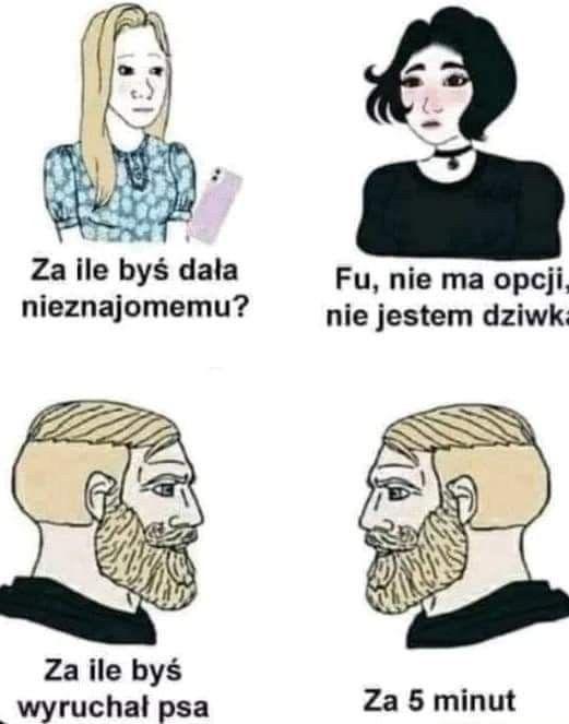 Pin By Malgoska On Memy Memes Funny Humor
