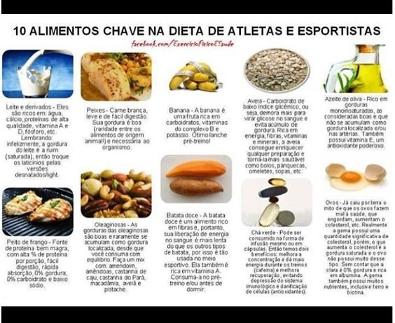 Alimentos importantes