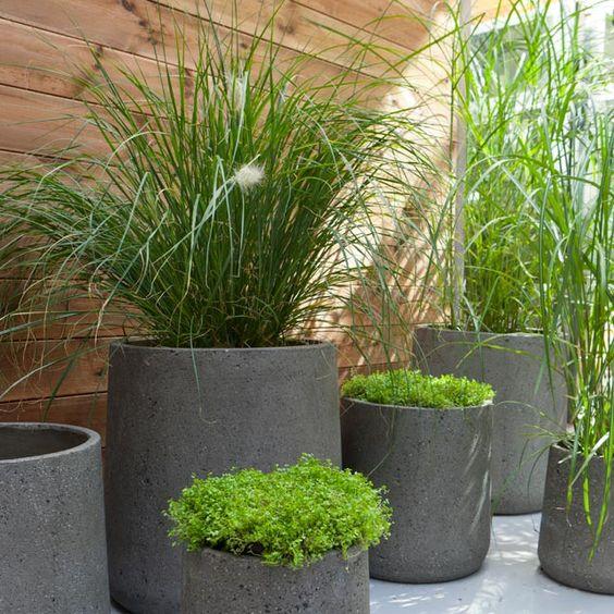 sec pots en béton groupe pots de fleurs gris patios moderne terrasse ...
