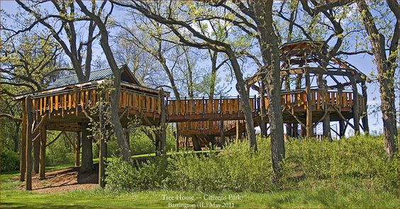 Accessible Treehouses Should Be Available Everywhere