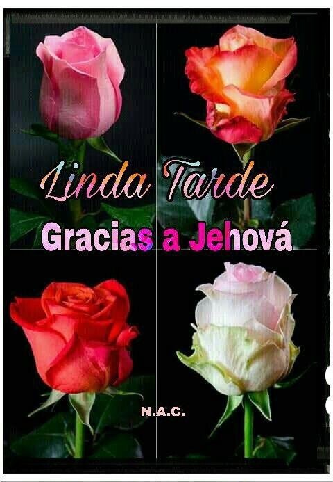 Linda Tarde Buenos Deseos