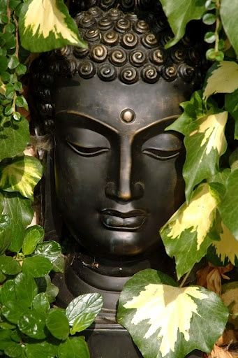 SUZ speak or act with a pure mind & happiness will follow you ...  as your shadow, unshakable ...~buddha, dhammapada  Buddha
