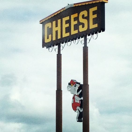 How high would you climb for a bit of cheese?