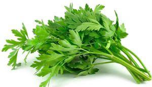 Obat penumbuh rambut alami dan tradisional daun seledri