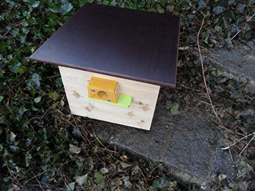 Xxl Hummelkasten Mit Wachsmottensperre 2x Sichtfenster Und Nistmaterial Geflammt Oder Impragniert Wetterfest Bienenhaus Hum Nistkasten Insektenhaus Bienenhaus