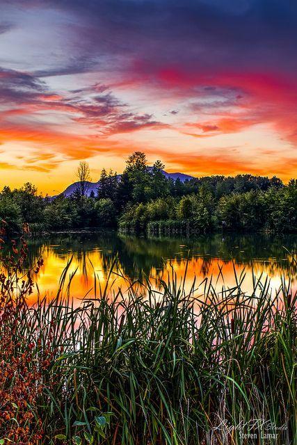 Nature's Canvas - Washington -- by Steven Lamar on Flickr