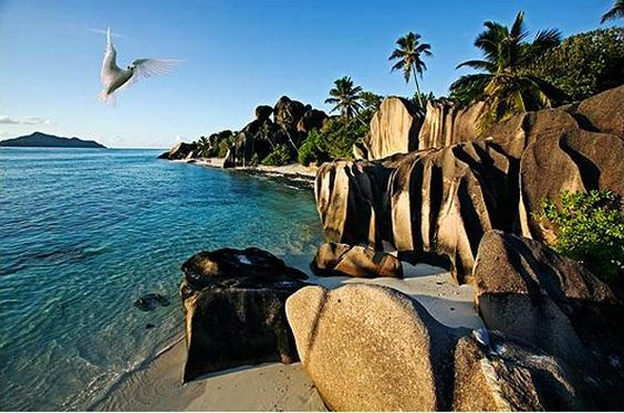 Relax on sand in the Seychelles Rent a bike, the preferred mode of transport on La Digue Island, and pedal to Grand Anse Beach on the isles southeastern side. Walk your bike down the steep descent. Youll be one of the beachs few visitors, as its remoteness thwarts most. #beach #travel: