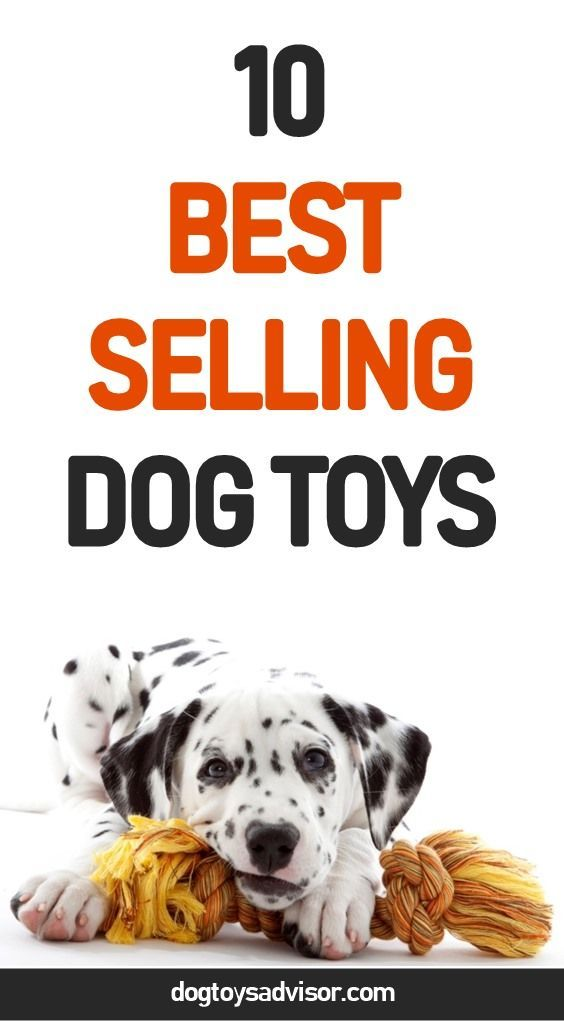 Are You Looking For The Best Dog Toys Here Are The 10 Best Selling Dog Toys Find Out About Indestructible Dog Toys Do Best Dog Toys Dog Toys Dog Puzzle Toys