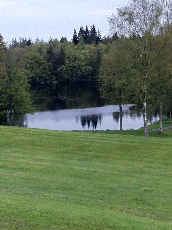 Lake within grounds of Bowhill, owned by Duke of Buccleuch.