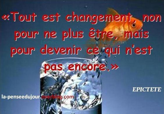 TOUT EST CHANGEMENT - La Pensée Du Jour - Votre Blog de Citations ...: