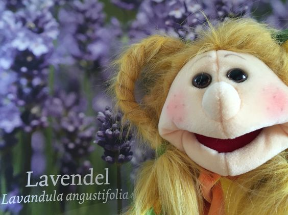 Prinzessin Lavandula