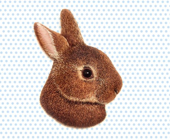 Bunny by cOnieco on Etsy https://www.etsy.com/listing/212921337/bunny